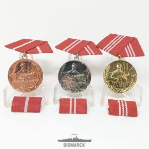 Medallas por Leal Servicio en Grupos de Combate