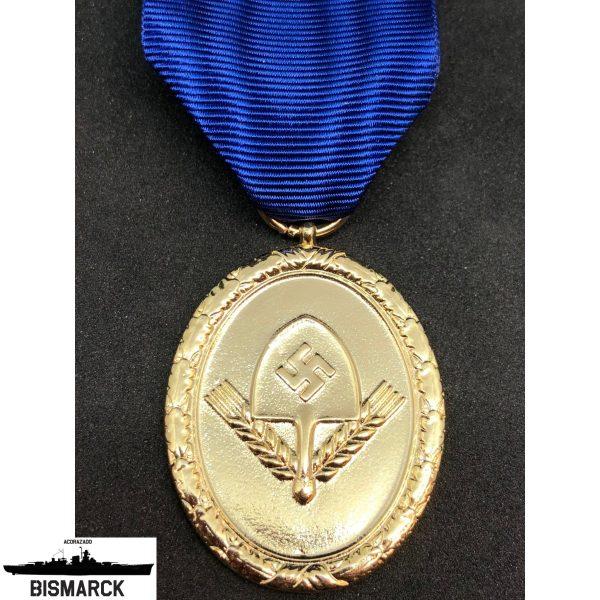 medalla al servicio del RAD