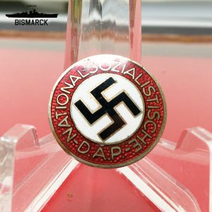 Pin NSDAP M1\100