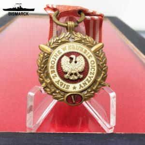 Medalla 5 años de Servicio