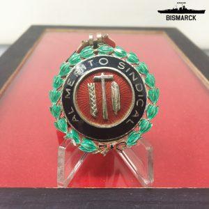 Medalla al Mérito Sindical